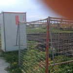 Outdoor toilet and rubbish cage